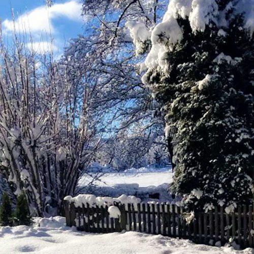 Blick aus dem Büro Schneeparadies