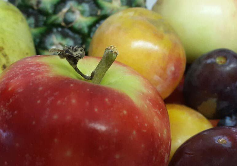 krummes Obst für Mitarbeiterzufriedenheit bei der rocom